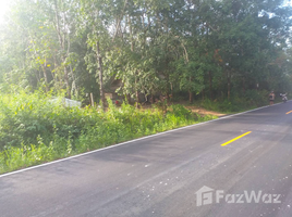 N/A Property for sale in Ko Chang Tai, Trat Land for Sale on Koh Chang