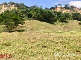 N/A Terreno (Parcela) en venta en , Antioquia #, Chinchin�, Antioqu�a
