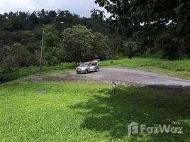 Panama Oeste Sora SORA, ALTOS DEL MARIA, SANTIAGO APOSTOL, Chame, Panamá Oeste N/A 土地 售