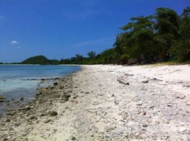 N/A ที่ดิน ขาย ใน ตลิ่งงาม, เกาะสมุย Land For Sale At Koh Mat Sum