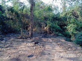 N/A Property for sale in Kut Pong, Loei Land For Sale In Loei