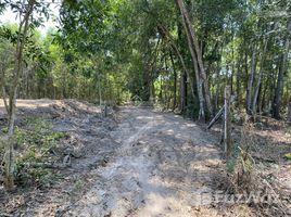 N/A Land for sale in Long Phuoc, Dong Nai GIA ĐÌNH CÓ VIỆC CẦN GIẢI QUYẾT BÁN GẤP LÔ ĐẤT NỞ HẬU RẺ HƠN THỊ TRƯỜNG 500TR, THIỆN CHÍ LÀ BÁN