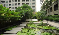 Photos 2 of the Communal Garden Area at The Seed Memories Siam