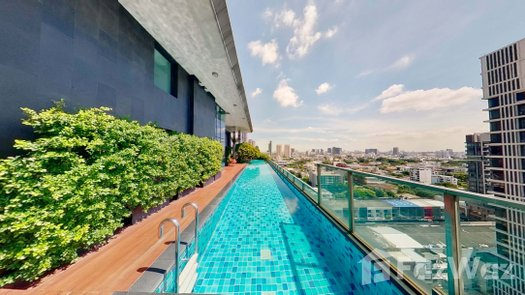 3D Walkthrough of the Communal Pool at The Alcove Thonglor 10
