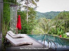 1 Bedroom Property for sale in Kamala, Phuket The Trees Residence
