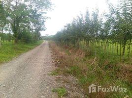 N/A Grundstück zu verkaufen in , Limon Limón
