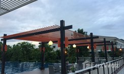 Photos 2 of the Communal Pool at Smart Condo at Rama 2