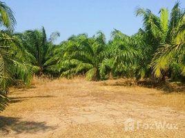 N/A Land for sale in Bueng Ba, Pathum Thani 10 Rai Land Near Khlong Chonlaprathan