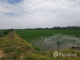 北柳 Sala Daeng 18-2-4 Rai Land in Bang Nam Priao for Sale N/A 土地 售
