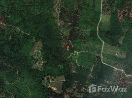 N/A Land for sale in Bo Phut, Koh Samui 115 Rai Exclusive Plot For A Large Project
