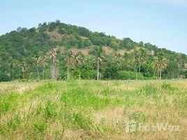 N/A Land for sale in Wang Phong, Hua Hin Land 20 Rai near Phetkasem Khao Tao-Pranburi Road