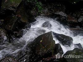 Земельный участок, N/A на продажу в , Guanacaste Finca San Miguel: The hidden paradise - Waterfalls - Creeks - Springs - Sunset - View of the Nicoya, Cañas, Guanacaste
