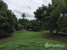 N/A Property for sale in Ban Mae, Chiang Mai Land in Tambon Baan Mae