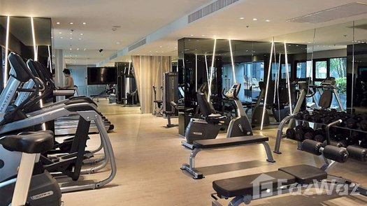 Photos 1 of the Communal Gym at The Base Central Pattaya