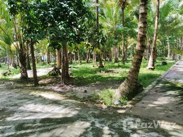 Lampung Pesisir Tengah Land for Sale in Krui Sumatra N/A 土地 售
