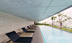 Photos 1 of the Communal Pool at Siamese Exclusive Sukhumvit 31