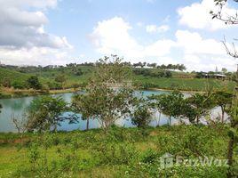 林同省 Dam Bri Một nơi khí hậu ôn hòa mát mẻ quanh năm 18 độ C thích hợp nghỉ dưỡng view hồ, đồi chè, rừng thông N/A 土地 售
