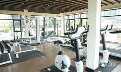 Photos 2 of the Communal Gym at Dusit Grand Condo View