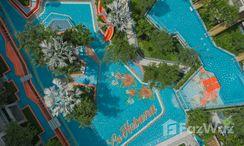 Photos 1 of the Communal Pool at La Habana