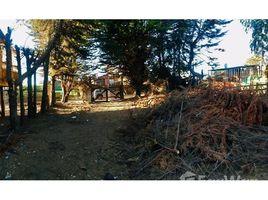 N/A Immobilie zu verkaufen in Quintero, Valparaiso Puchuncavi