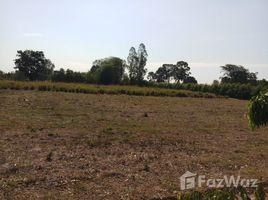 呵叻府 Nong Rawiang Land For Sale In Nong Brue Phumai N/A 土地 售