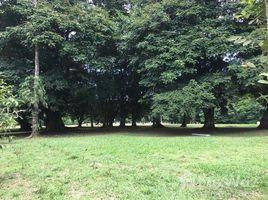 N/A Grundstück zu verkaufen in , Limon Calle Danta, Guapiles, Limon