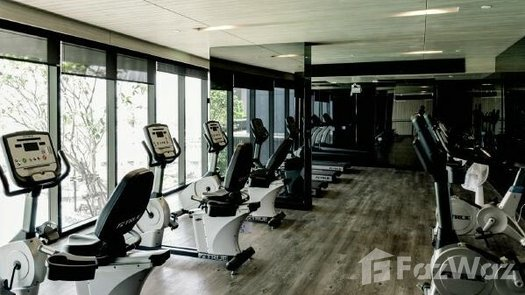 Photos 1 of the Communal Gym at The Tree Interchange