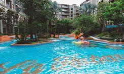 Photos 2 of the Communal Pool at La Habana