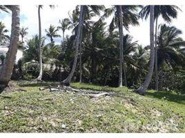 N/A Grundstück zu verkaufen in , Espaillat 56000, Dominican Republic, Gaspar Hernandez,Espaillat Province, Espaillat Province