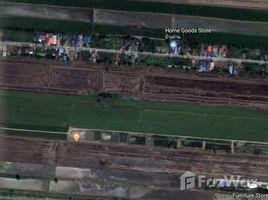 N/A Land for sale in Bueng Thong Lang, Pathum Thani Beautiful Long Land Plot At Lam Luk Ka