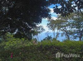 Puntarenas Playa Dominical, Dominical, Puntarenas N/A 土地 售