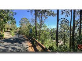 林同省 Ward 3 Bán đất thổ cư cực vip ngay cửa ngõ vào trung tâm, P3 view rừng thông gần cáp treo Đà Lạt N/A 房产 售