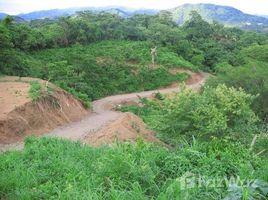 N/A Terreno (Parcela) en venta en , Guanacaste Finca Alvarado: Beautiful Land in Playa Samara!, Sámara, Guanacaste