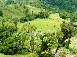 Земельный участок, N/A на продажу в , Guanacaste Pedro de rio chiquito, Guanacaste, Address available on request