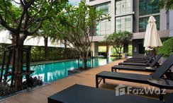 Photos 2 of the Communal Pool at The Room Sukhumvit 21