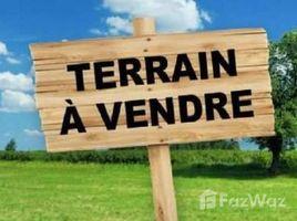 Guelmim Es Semara Na Zag Terrain de 38 Hectare à Vendre sur Sidi Bouknadel N/A 土地 售