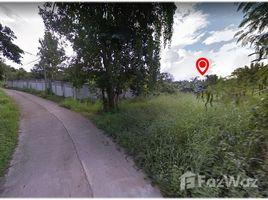夜丰颂 Wiang Tai Land for sale in Pai, Mae Hong Son District N/A 土地 售