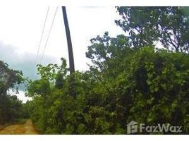 N/A Immobilier a vendre à , Bay Islands Lot 7 - Green forested Lot, Utila, Islas de la Bahia