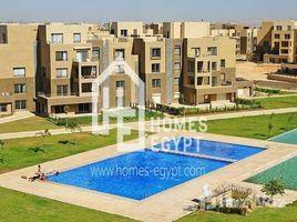 Al Jizah Unfurnished Penthouse Studio For Rent n Palm Parks 开间 顶层公寓 租