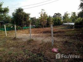 N/A Land for sale in Huai Sai, Chiang Mai Land in Tambon Huay Sai