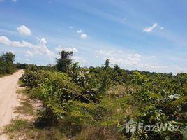 Kampong Speu Damnak Reang Other-KH-77241 N/A 土地 售