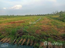 N/A Đất bán ở Thạnh Lợi, Long An 13.400m2 đất vườn giá 250tr/1000m2 Thạnh Lợi - Bến Lức - Long An