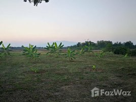 N/A Land for sale in Buak Khang, Chiang Mai 834 SQW Land for Sale in San Kamphaeng