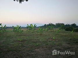 N/A บ้าน ขาย ใน บวกค้าง, เชียงใหม่ 834 SQW Land for Sale in San Kamphaeng