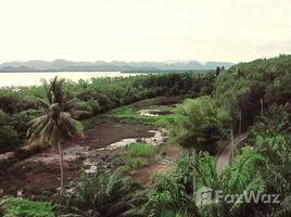 N/A Land for sale in Laem Sak, Krabi Rare Location Land on Oceanfront in Ao Luek, Krabi