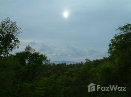 N/A Property for sale in Ang Thong, Koh Samui Bang Makham Land