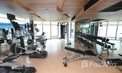 Photos 3 of the Communal Gym at Liv@49