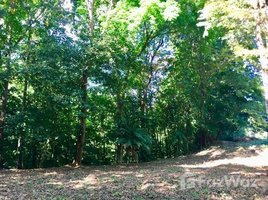N/A Land for sale in , Puntarenas River's Edge: Mountain Home Construction Site For Sale in Puerto Cortés, Puerto Cortés, Puntarenas