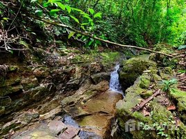 N/A Land for sale in , Puntarenas Dominical, Puntarenas, Address available on request