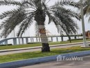5 Bedrooms Villa for rent at in The Jewels, Dubai - U831406
